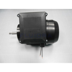 Conjunto Motor 3/4 Cv. II