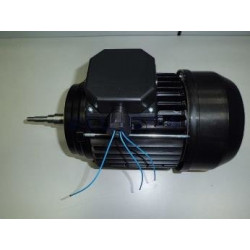 Conjunto Motor 1,5 Cv III