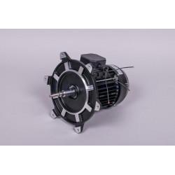 Motor 3/4 Hp III