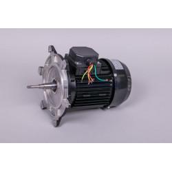 Motor 2 Hp III