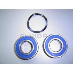 Rodamientos Motor 5,5 Cv
