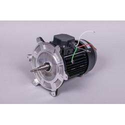 Motor 3 Hp III