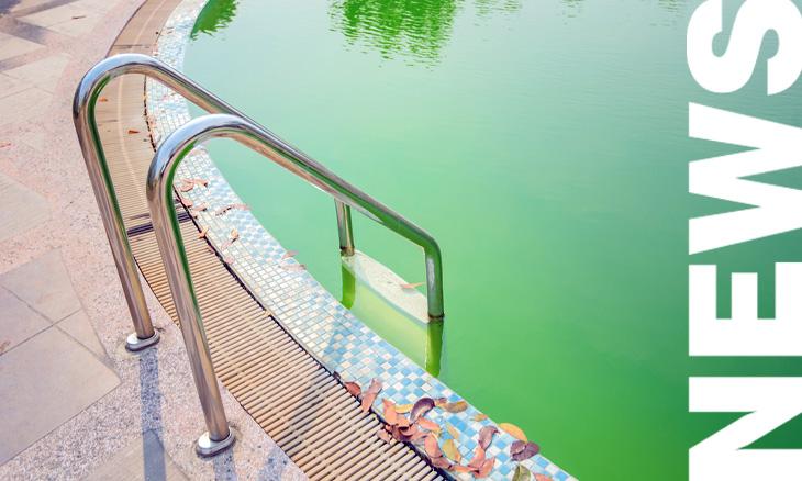 ¿El agua de tu piscina está verde? Descubre como solucionarlo