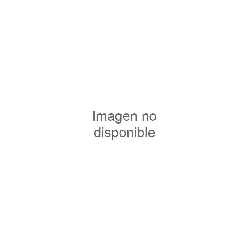 Boquilla de impulsión intercambiable INOX AstralPool